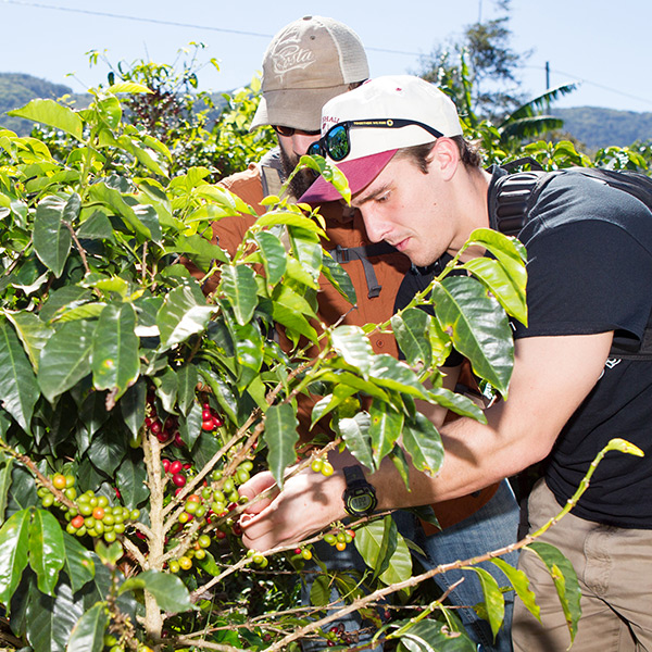 Students experience the rich and raw side of Costa Rica's coffee industry and reassess value of people, planet and profit
