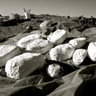 Triassic trip 2012