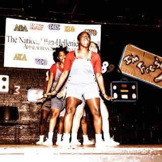 Step Show 2008: Delta Sigma Theta - Rho Theta Chapter